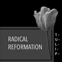 Radical Reformation